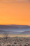 Orange light colors the sky during the soft hazy sunrise in Southeast Oregon looking toward the distant hills.