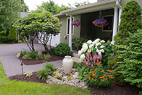 Entryway landscaping with hydrangea, driveway, ornamental pot, trees and shrubs, butterfly weed Asclepias, Astilbe, hanging pots