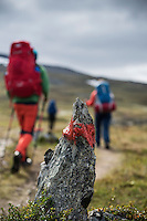 Rock painted red as trail marker along Kungsleden trail, Lapland, Sweden