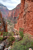 Hiker on the North Kaibab trail in the Red wall limestone above roaring springs