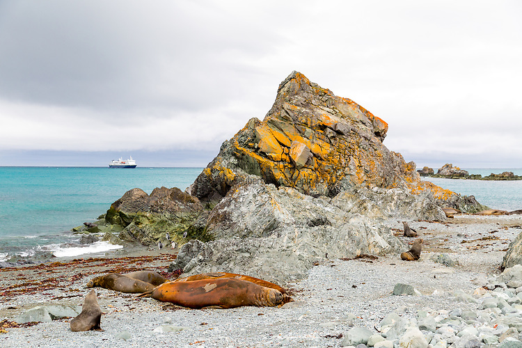 Sally Rocks, Livingston Island, Antarctica