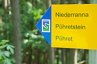 Puhret, Danube, Upper Austria, June 2010. Near the village of Puhret the trail passes through dense forest with ferns on its way to Niederanna, only to give its view to the river on at Penzenstein and Falkenstein. The 450 kilometre long Donausteig hiking trail roughly follows the Danube on both sides of the river between Passau in Germany and Grein in Austria. Photo by Frits Meyst/Adventure4ever.com