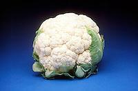 BRASSICA VEGETABLE<br /> Cauliflower<br /> Brassica oleracea var. cruciferae in the mustard family.