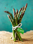 Stock photos of a bunch of fresh English asparagus spears . Funky stock photos images.