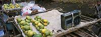 Afrique/Afrique de l'Est/Tanzanie/Zanzibar/Ile Unguj: dans un village de la Jozani Forest