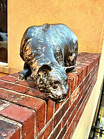 Cat statue, downtown Asheville, NC, iPhone photo from the archive at bcpix.com. (Photo by Brian Cleary/www.bcpix.com)
