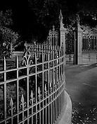 City Park Fence &amp; Gate<br /> Launceston