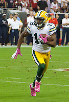 Randall Cobb collected 7 passes for 102 yards as the visiting Green Bay Packers defeated the Houston Texans 42-24 at Reliant Stadium