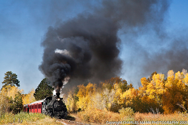 Visitors from all over the country and from overseas come to see and ride the Cumbres & Toltec Narrow Gauge Steam Railroad in Chama, New Mexico. Engine number 489 smokes through the cottonwoods and aspen on a mid September run up the Mountain.