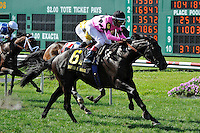 Casino Host (no. 6), ridden by John Velazquez and trained by Chad Brown, wins the 20th running of the grade 2 Mervin H. Muniz Jr. Memorial Handicap for four year olds and upward on April 1, 2012 at Fair Grounds Race Course in New Orleans, Louisiana.  (Bob Mayberger/Eclipse Sportswire)