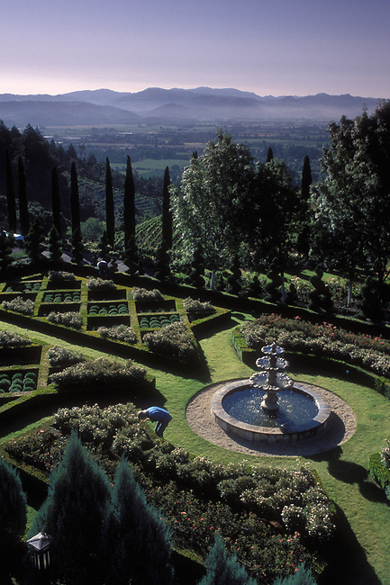 Garden of Newton Vineyard, located on Spring Mountain.  Center of Napa Valley in distance