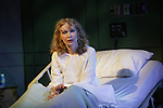 Fran's Bed, by James Lapine, directed by James Lapine.LWT 10/28/04..Long Wharf Theatre production of this play in 2003. Set Design: Derek McLane. Costume Design: Susan Hilferty Lighting Design: David Lander .....© T Charles Erickson.photoshelter.com/c/tcharleserickson