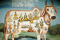Sri Lanka. Nandi painted on wall of Coast Road on the East Coast. South of Kalmunai.