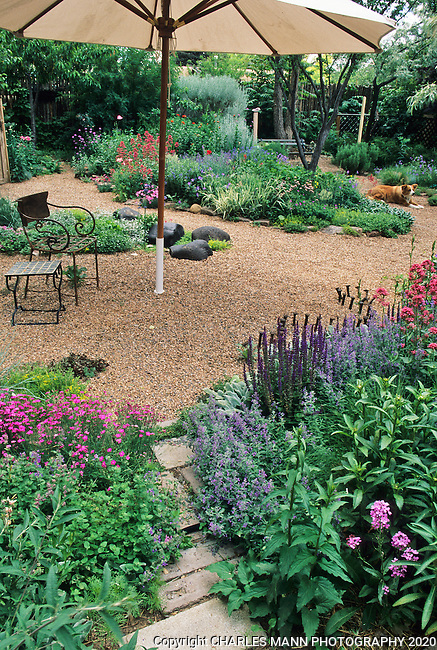In the southwest and Rocky Mountain areas, water wise landscape designs come in all colors and shapes and incorporate a wide range of both nativespecies as well as appropriate adapted plants, ranging from succulents and cacti to endemic penstemons and traditional perennials.  Artist and gardener Ann Mehaffy made a gravel mulched drought tolerant garden in her Santa Fe backyard..
