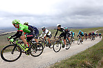 Riders including World Champion Peter Sagan (SVK) Bora-Hansgrohe on the white gravel raods of Tuscany during the 2017 Strade Bianche running 175km from Siena to Siena, Tuscany, Italy 4th March 2017.<br /> Picture: Heinz &amp; Sabine Zwicky/Radsport.ch | Newsfile<br /> <br /> <br /> All photos usage must carry mandatory copyright credit (&copy; Newsfile | Heinz &amp; Sabine Zwicky/Radsport.ch)