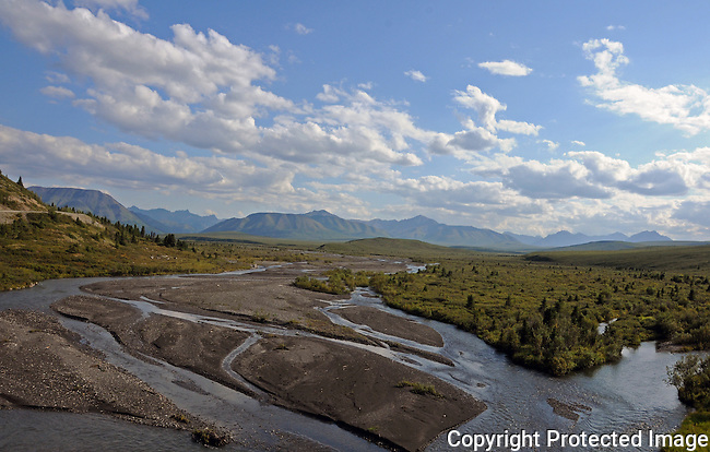 Braided River in Denali National Park