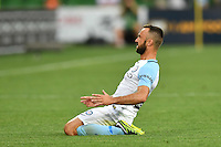 Melbourne, 6 January 2017 - IVAN FRANJIC (5) of Melbourne City celebrates his goal in the round 14 match of the A-League between Melbourne City and Western Sydney Wanderers at AAMI Park, Melbourne, Australia. Melbourne won 1-0 (Photo Sydney Low / sydlow.com)