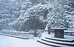 11.13.14 Grotto in Snow.JPG by Matt Cashore/University of Notre Dame