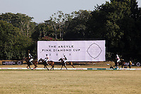 Players chase the ball during a game between the Royal Jaipur Polo Team (in pink) and the Western Australia Polo Team (in black) for the Argyle Pink Diamond Cup, organised as part of the 2013 Oz Fest in the Rajasthan Polo Club grounds in Jaipur, Rajasthan, India on 10th January 2013. Photo by Suzanne Lee