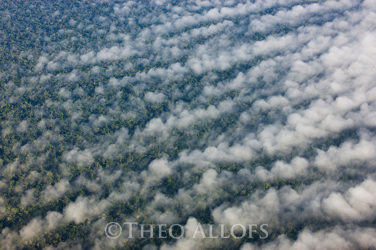 Bolivia, Beni Department, low clouds over pristine Amazonian rain forest, morning fog