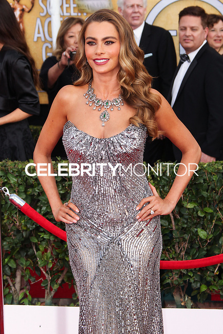 LOS ANGELES, CA - JANUARY 18: Sofia Vergara at the 20th Annual Screen Actors Guild Awards held at The Shrine Auditorium on January 18, 2014 in Los Angeles, California. (Photo by Xavier Collin/Celebrity Monitor)