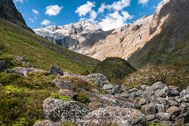 Alpine views of Darran Mountains through Gertrude Valley near Hommer Tunnel, Fiordland National Park, UNESCO World Heritage Area, Southland, New Zealand, NZ