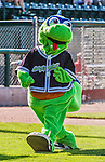 29 June 2014:  The Vermont Lake Monsters Mascot Champ entertains the fans prior to a game against the Lowell Spinners at Centennial Field in Burlington, Vermont. The Lake Monsters fell to the Spinners 7-5 in NY Penn League action. Mandatory Credit: Ed Wolfstein Photo *** RAW Image File Available ****