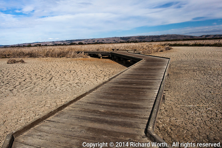 The wooden pathway meant to allow access into the wetlands instead stands over sun-baked dirt due to the ongoing drought - October 2014 at Coyote HIlls Regional Park, Fremont, California.