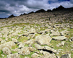 "Carn Menyn, Prescelly Mountains, Nr Crymych Pembrokshire Wales. Celtic Britain published by Orion. Frost shatered rocks are called ""Blue Stones""  or Bluestones and were taken from here to build Stonehenge on Salisbury Plain."