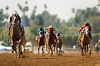 ARCADIA, CA - MARCH 11: Paradise Woods with Flavien Prat wins a maiden race at Santa Anita Park before being vanned off with an injury, on March 11, 2017 in Arcadia, California. (Photo by Alex Evers/Eclipse Sportswire/Getty Images)