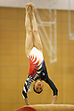 Japan Women's Gymnastic Team training camp at Ajinomoto National Training Center