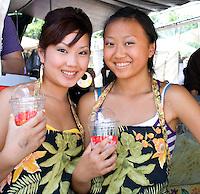 Hmong Sports Festival