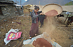 Sita Ghale, 14, winnows chaff from grain in the village of Goljung, in the Rasuwa District of Nepal near the country's border with Tibet.