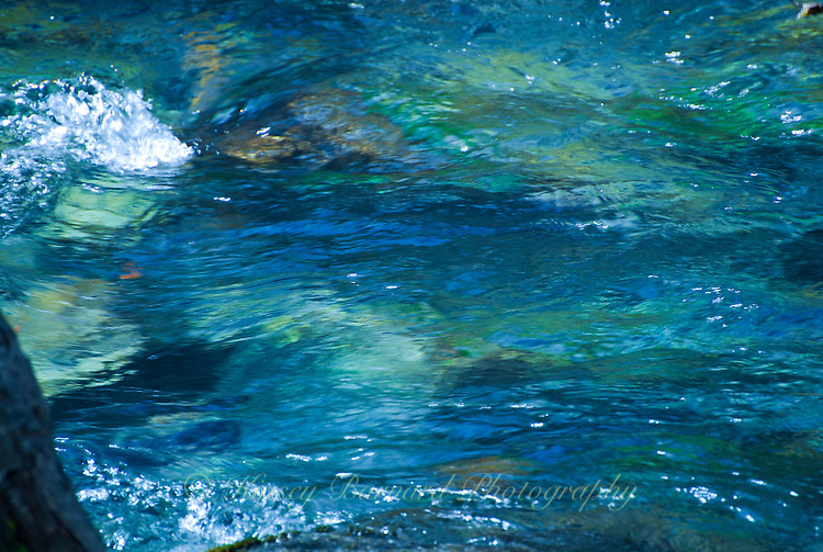 &quot;SPALSH!&quot;<br /> <br /> Patrick Creek, California 24 x 36 signed, original, gallery wrapped wrapped canvas $2,500. Check for availability