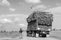 Kakuma, Kenya: Having completed piling the truck high with firewood, to be used for cooking food and keeping refugees warm and dry, this worker threw his shovel on top of the pile.
