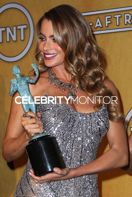 LOS ANGELES, CA - JANUARY 18: Sofia Vergara in the press room at the 20th Annual Screen Actors Guild Awards held at The Shrine Auditorium on January 18, 2014 in Los Angeles, California. (Photo by Xavier Collin/Celebrity Monitor)