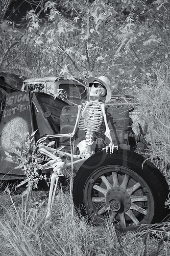 Skeleton getting a suntan while relaxing and taking his ease in a junkyard, black and white infrared photograph.