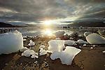 Icy Bay, Alaska