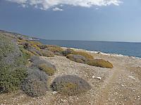SEA_LOCATION_80005
