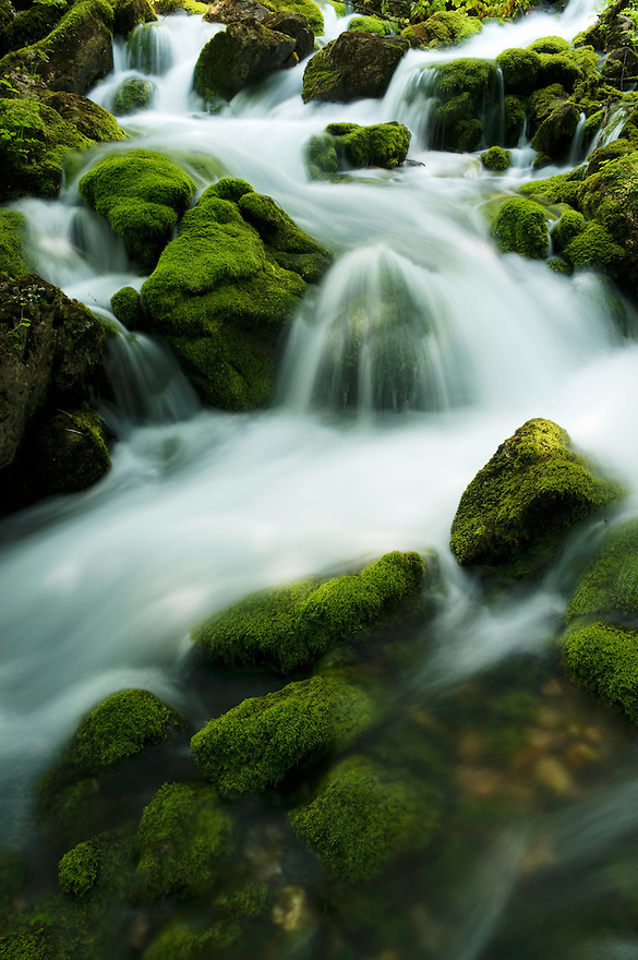 River Zadnjica, cascades, moss-grown stones in water<br /> Triglav National Park, Slovenia<br /> July 2009
