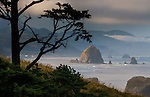 Haystack rock and coastline on a foggy morning, Cannon Beach, Oregon, USA