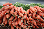 Bright fresh carrots at farm stand