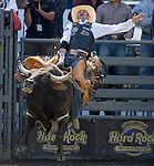 2007 PRCA World Champion bull rider Wesley Wilcox scores a 74, while riding Mad Scientist during the Xtreme Bull Riding Competition at the Kitsap County Fair and Stampede  held Aug. 26 to Aug. 30, 2009 in Silverdale, WA. Jim Bryant Photo. All Rights Reserved. © 2009