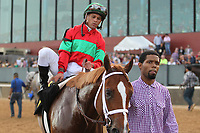 HOT SPRINGS, AR - MARCH 18: Jockey Javier Castellano aboard Malagacy #6 after winning the Rebel Stakes race at Oaklawn Park on March 18, 2017 in Hot Springs, Arkansas. (Photo by Justin Manning/Eclipse Sportswire/Getty Images)