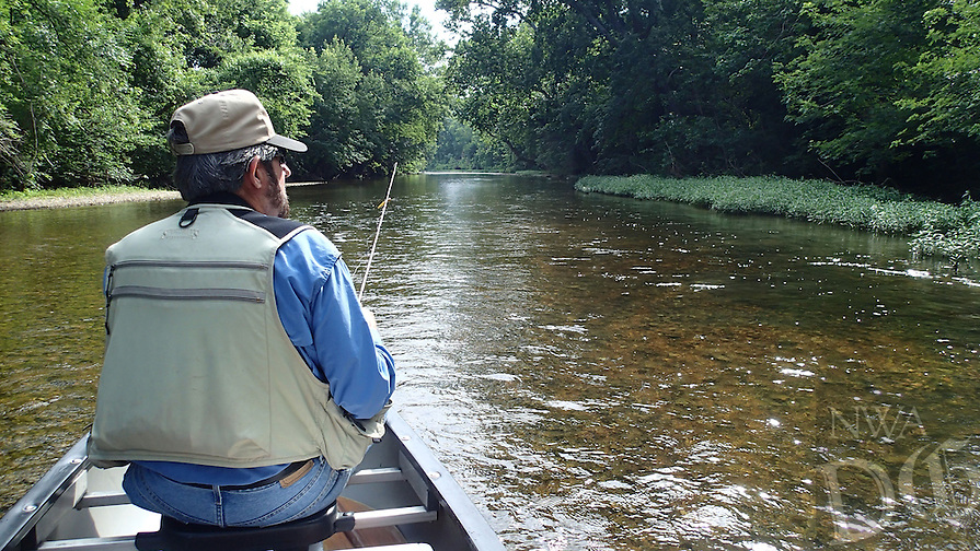 NWA Democrat-Gazette/FLIP PUTTHOFF <br /> Russ Tonkinson fishes the clear water of Flat Creek during a float trip on June 17, 2016. Flat Creek meanders through southwest Missouri in Barry County. It flows into Table Rock Lake near Cape Fair, Mo.