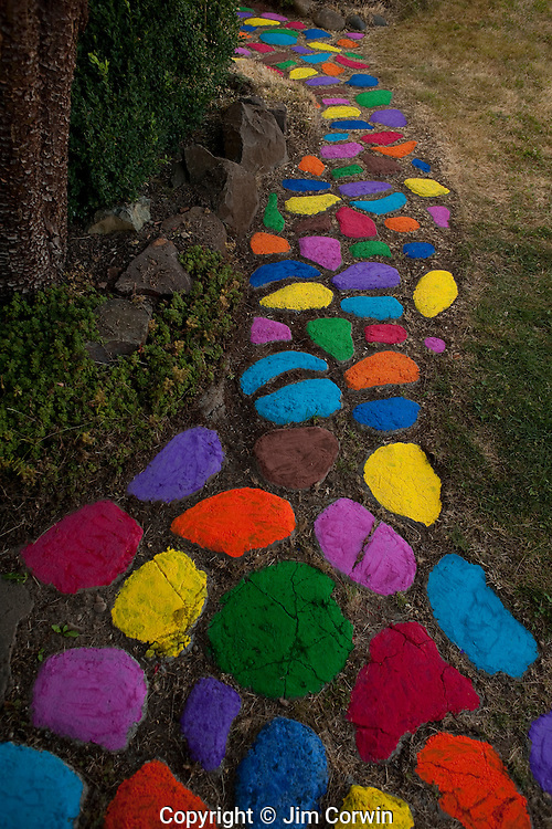 Path with Stepping Stones Multicolored