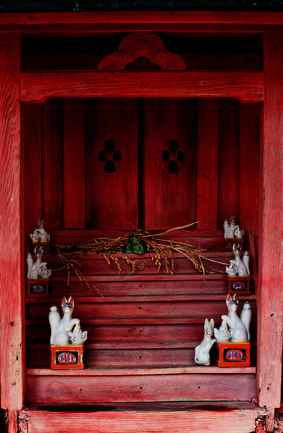 A neighbourhood Inari shrine holds an offering of ripe rice (in thanks for a successful harvest) to the resident fox gods.