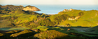 Sunrise over coastal farmland with Wharariki Beach in background near Collingwood, Nelson Region, South Island, New Zealand