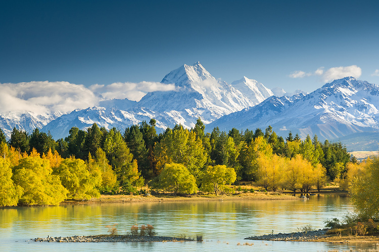 Autumn colours on the shores of Lake Pukaki. Aoraki Mt Cook in background. Mackenzie Country, South Canterbury South Island New Zealand.