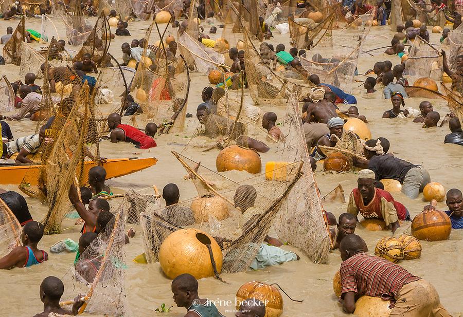 The Crucial Search. Argungu Fishing Festival, Nigeria.
